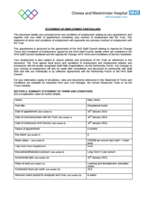 nursing portfolio examples nmc